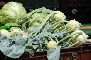 cabbage-kohlrabi-19654887