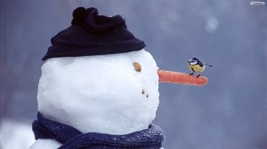 snowman-and-sparrow-wallpaper